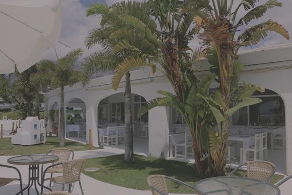 Terraza lounge bar en Benalmadena